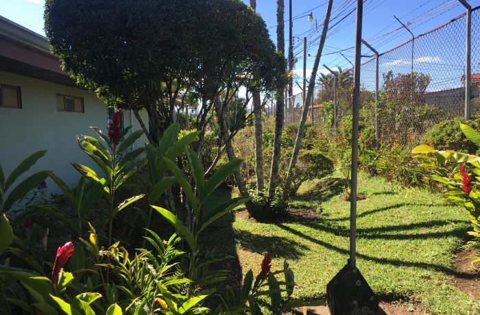 Amplias zonas verdes